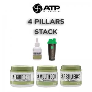 4-PILLARS-STACK (1)