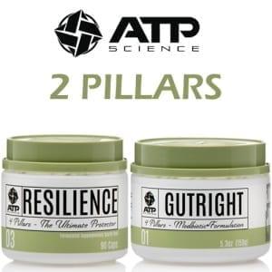ATP 2 PILLARS v2