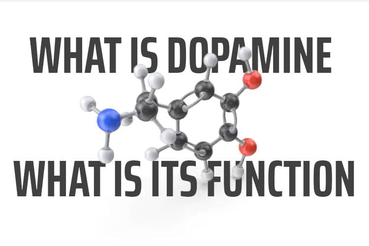What is Dopamine and what is its function