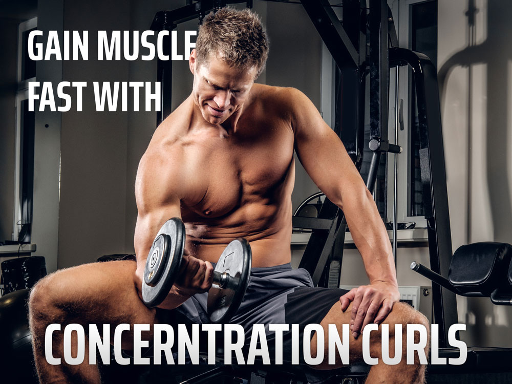 Concerntration curls to Gain Muscle Fast